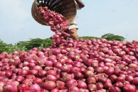 The price of onion is still declining in the wholesale market